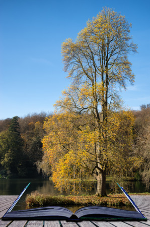stourhead: Trees and main lake in Stourhead Gardens during Autumn conceptual book image Stock Photo
