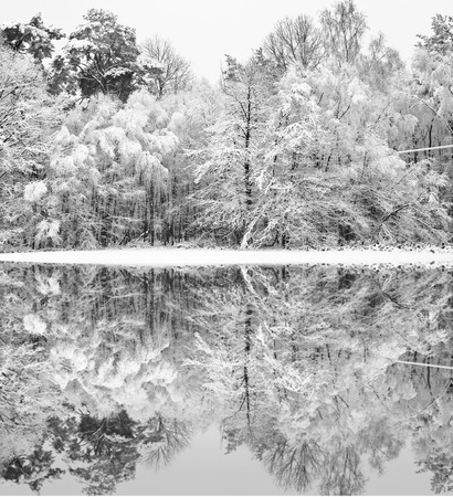 Beautiful landscape of glistening frost and snow covered trees reflected in frozen lake photo