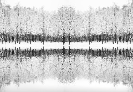bleak: Beautiful landscape of glistening frost and snow covered trees reflected in frozen lake Stock Photo