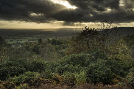 moody: Stunning Autumn Fall sunset over forest landscape with moody dramatic sky