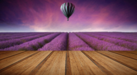 lavandula angustifolia: Beautiful image of lavender field Summer sunset landscape with hot air balloon with wooden planks floor Stock Photo