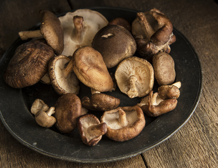 Fresh shiitake mushrooms in moody natural light setting with vintage style