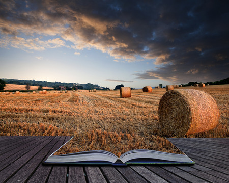 hay bales: Lovely sunset golden hour landscape of hay bales in field in English countryside conceptual book image