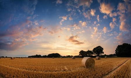 feild: Beautiful Summer sunset landscape over feild of hay bales