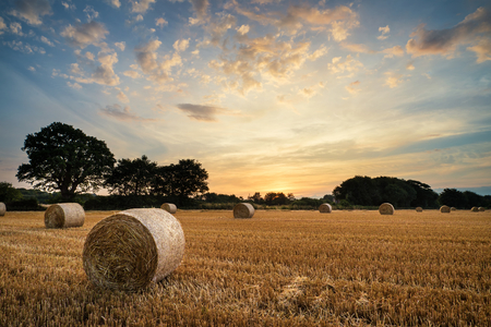 Beautiful Summer sunset over field of hay bales in countryside landscape photo