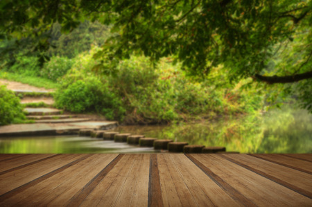 copse: Enchanted forest scene of slow flowing stream with vibrant reflections with wooden planks floor