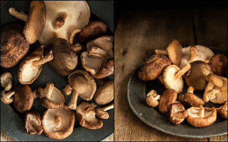 natural  moody: Compilation of images of Fresh shiitake mushrooms in moody natural light setting with vintage style