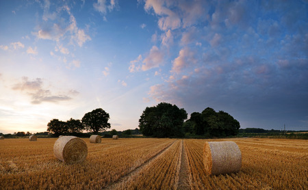 hay bales: Beautiful Summer sunset landscape over feild of hay bales