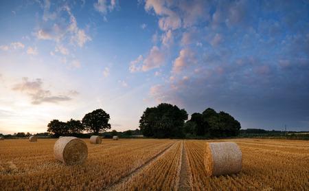 hay field: Beautiful Summer sunset landscape over feild of hay bales