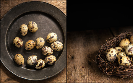 natural  moody: Compilation of moody natural lighting setting of quaills eggs with vintage style