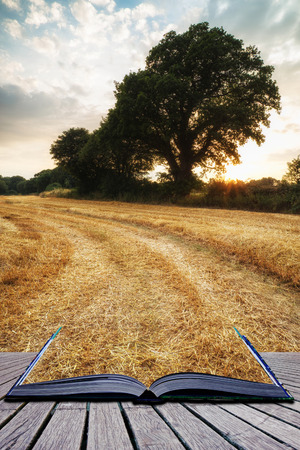 hay bales: Beautiful Summer sunset over field of hay bales in countryside landscape conceptual book image Stock Photo