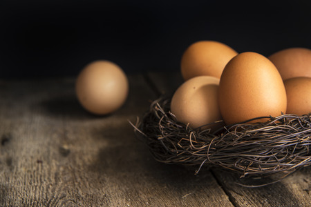 moody: Fresh eggs in birds nest in vintage style moody natural lighting set up