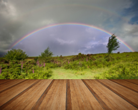 natue: Double rainbow above field on foxgloves in Summer with wooden planks floor