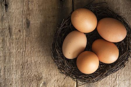 nido de pajaros: Huevos frescos en nido de aves en la iluminaci�n natural cambiante estilo vintage establecieron Foto de archivo