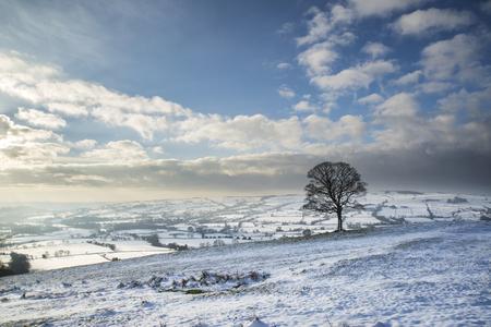 campagne rural: Beau paysage d'hiver couverte de neige paysage rural Banque d'images