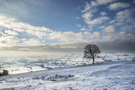 rural countryside: Beautiful Winter landscape snow covered rural countryside