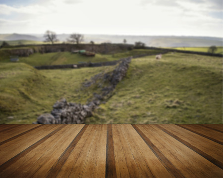 an agricultural district: Beautiful landscape of Peak District in UK with famous stone walls concept image
