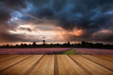 cloud formations: Colorful vivid Summer sunset over lavender fields with lovely cloud formations with wooden planks floor