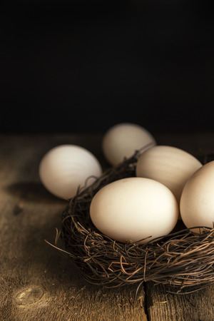 Fresh duck eggs in moody vintage style natural lighting set up