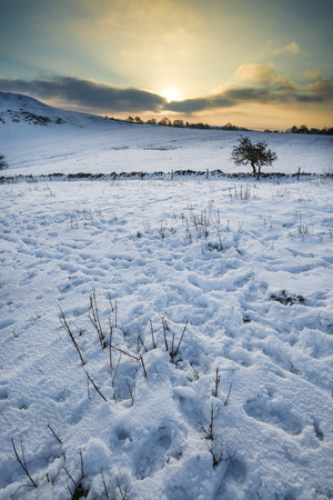 winter sunrise: Beautiful snow covered sunrise Winter countryside landscape