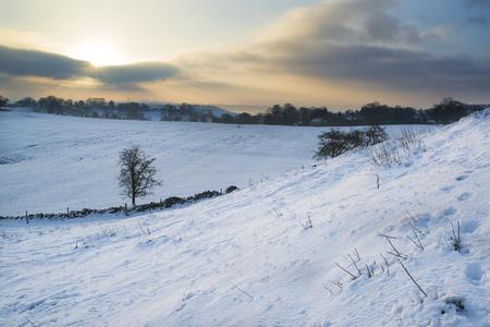 winter sunrise: Beautiful sunrise landscape over snow covered Winter countryside