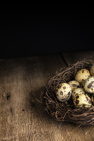 Moody natural lighting vintage style image of quaills eggs Stock Photo