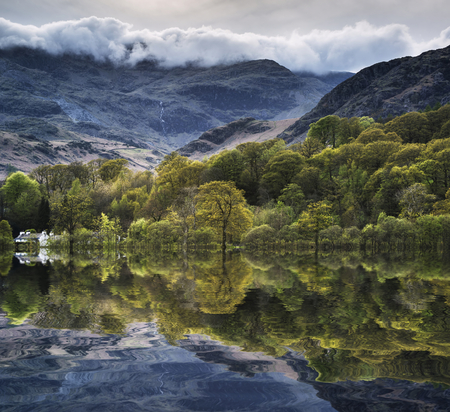reflected: Forest landscape reflected in calm water of Consiton Water in Lake District