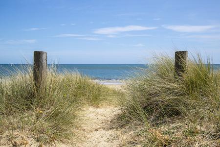 sunlgiht: Beautiful sand dunes and beach landscape on sunny Summer day