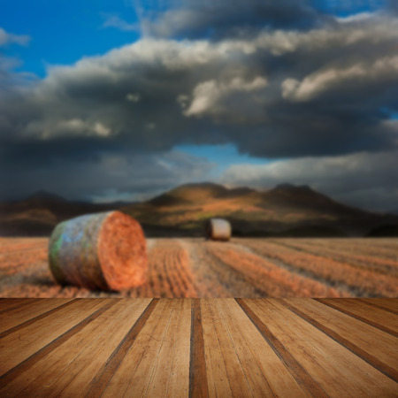 hay bales: Mountain range landscape with field of hay bales under dramatic sky with wooden planks floor Stock Photo