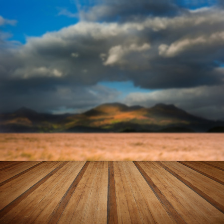 gust: Mountain range landscape with field ofwheat blowin wind under dramatic sky with wooden planks floor