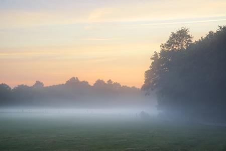sunlgiht: Foggy landscape during sunrise in English countryside landscape