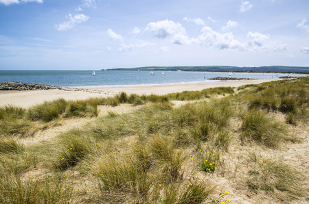 sunlgiht: Beautiful sand dunes and beach landscape on sunny Summer day