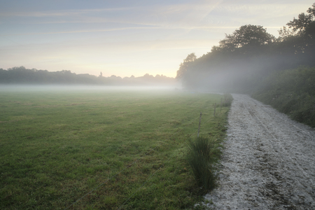 Foggy landscape during sunrise in English countryside landscape