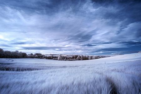 imaginary line: Surreal false color infrared Summer landscape over agricultural fields Stock Photo