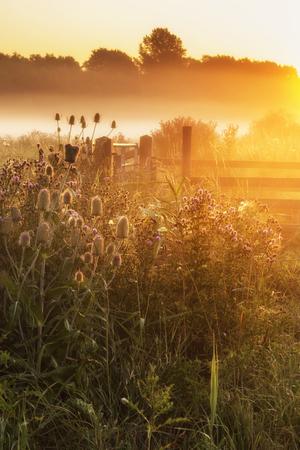 sunrise: Beautiful sunrise landscape over foggy English countryside with glowing sun Stock Photo