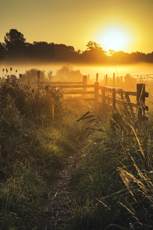 Beautiful sunrise landscape over foggy English countryside with glowing sun Stock Photo
