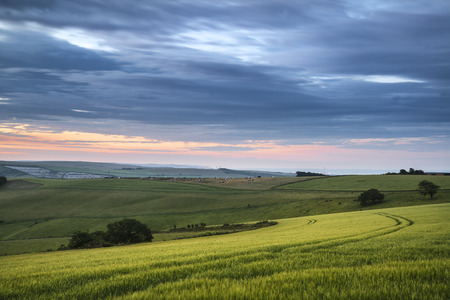 south downs: Summer sunset landscape Steyning Bowl on South Downs