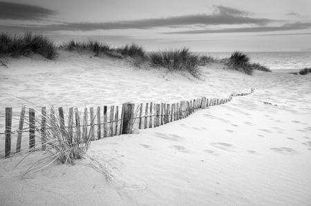 duna: Paisaje de la hierba en las dunas de arena en snrise con vallas de madera bajo las dunas de arena en blanco y negro