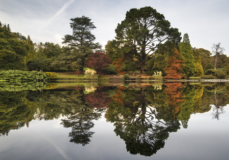 reflection: Beautiful Autumn forest landscape reflected in calm lake