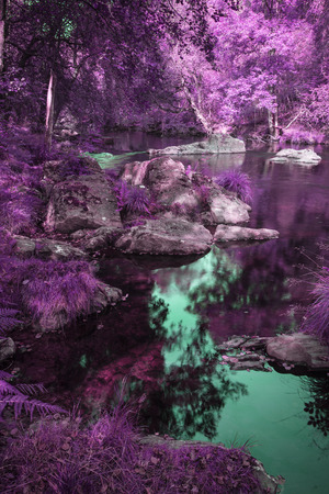 Beautiful river flowing through surreal alternate colored forest landscape