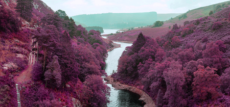 alternate: Stunning surreal alternate landscape of river flowing through forest