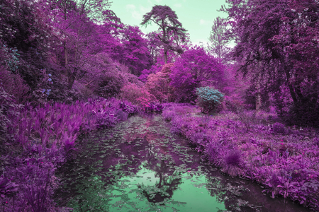 specialised: Stunning infra red alternative color landscape image of trees over river Stock Photo