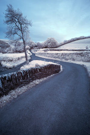 infra red: Stunning surreal color infra red landscape image of road winding through countryside