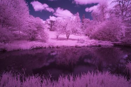 infra: Stunning infra red alternative color landscape image of trees over river Stock Photo