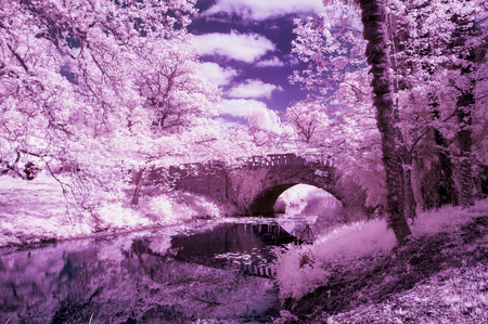 infra: Stunning infra red landscape image of old bridge over river in countryside Stock Photo