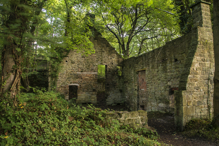 Spooky old abandoned derelict building in thick forest landscape