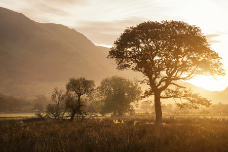 cumbria: Beautiful foggy misty Fall sunrise over countryside surrounding Crummock Water in Lake District in England Stock Photo