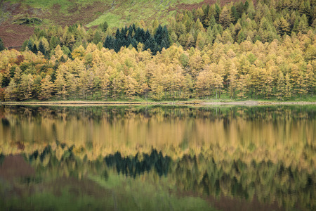 cumbria: Stunning Autumn Fall landscape image of Lake Buttermere in Lake District England