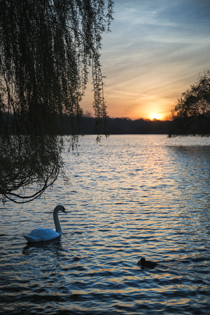 Beautiful Spring sunrise over calm lake in English countryside
