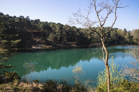 Beautiful landscape image of old clay pit quarry lake with unusual colored green water Stock Photo
